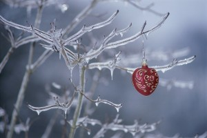 Christmas ornament hanging on a frozen tree